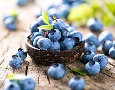 Freshly picked blueberries in wooden bowl. Juicy and fresh blueb