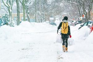 Snowstorm Shopping List