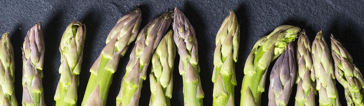 asparagus blog banner
